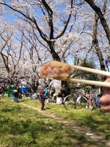 江戸川の桜その③ 海老しんじょ揚げと共に。